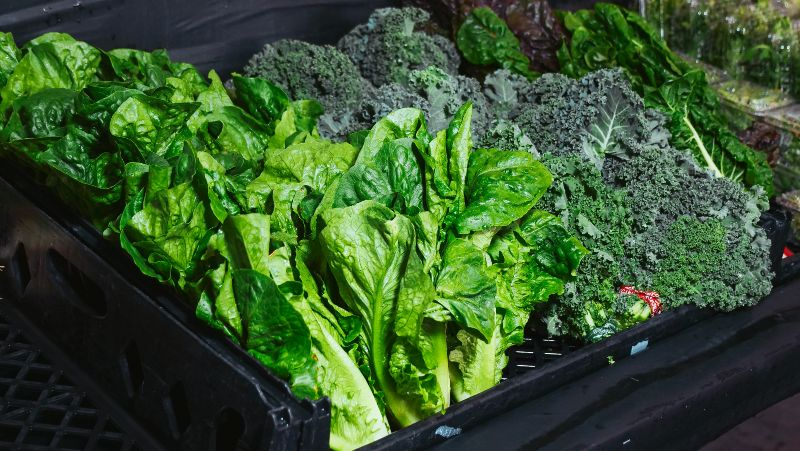 Green Vegetable on Black Plastic Container | Foods for Diabetics